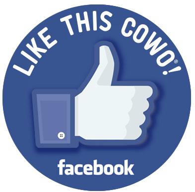 Pagina Facebook Coworking Bicocca 16